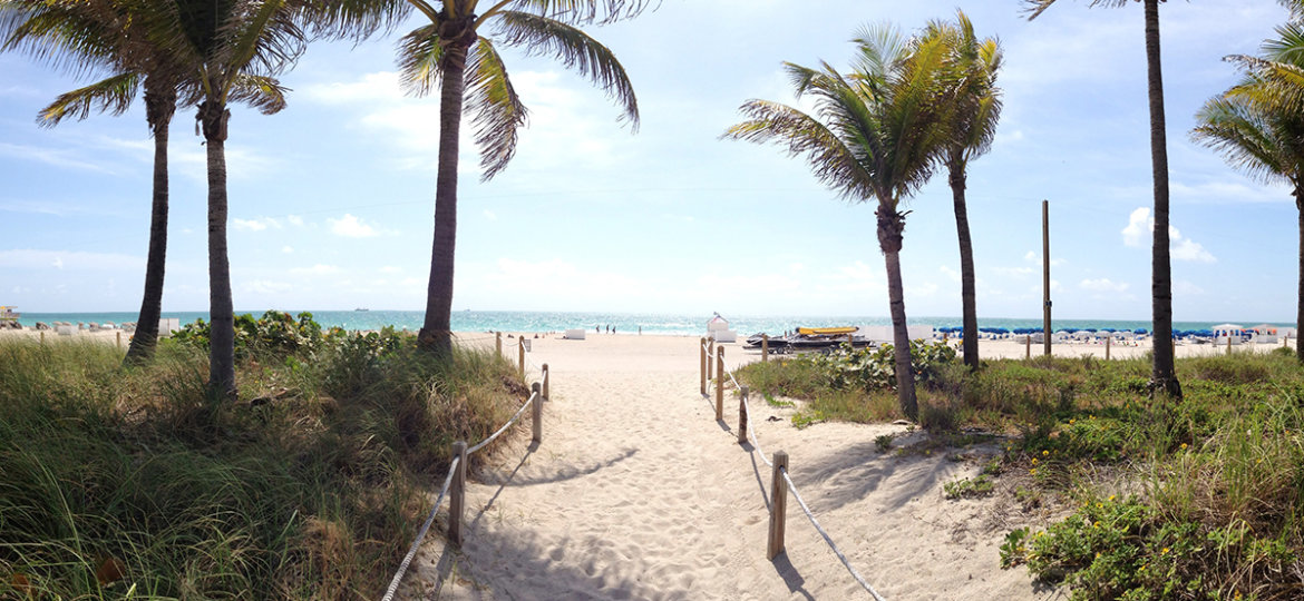 07 Jan January 7 We Are Nature Key Biscayne Beach Club Cleanup
