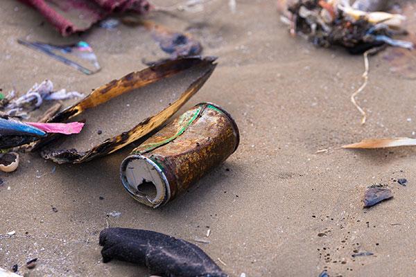 csp-beach-cleanup