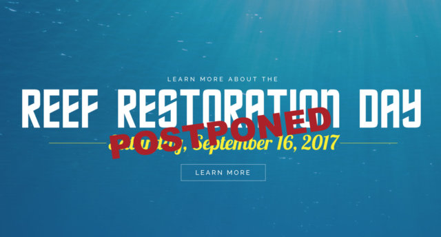 reef-restoration-postponed