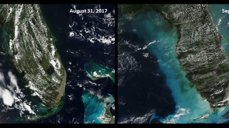 Irma before and after bottom changes